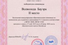 Всеволода__Бауэра__11_класс_certificate-1-1